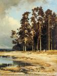 Forest. I. Shishkin. 1885. Canvas, oil